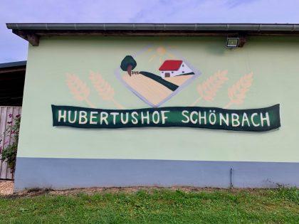 Bauernhofwochenende auf dem Hubertushof, Schönbach/Eifel